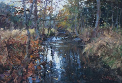Autumn on the Chrudimka