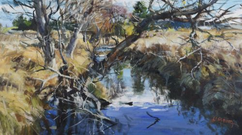 Brook in Šumava